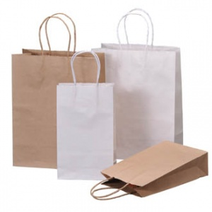 Category-Kraft paper bags
